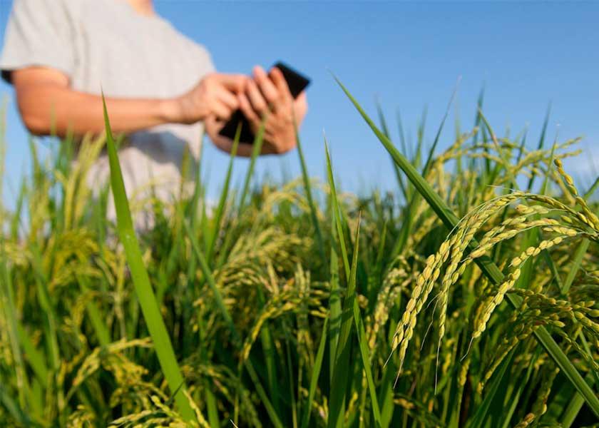 Каталог профессий сельское хозяйство Профессии работников сельского хозяйства примеры